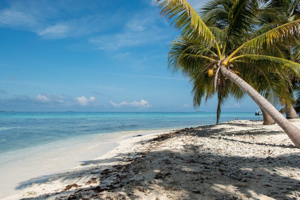 Jak założyć spółkę w Belize?